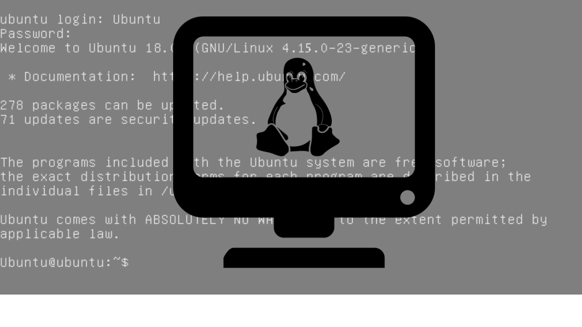 What is TTY Linux? How to use this command?